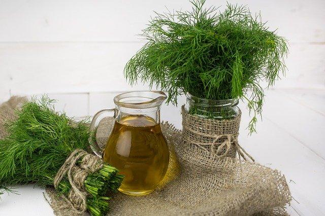 Honig-Senf-Dill Dressing frische Kräuter