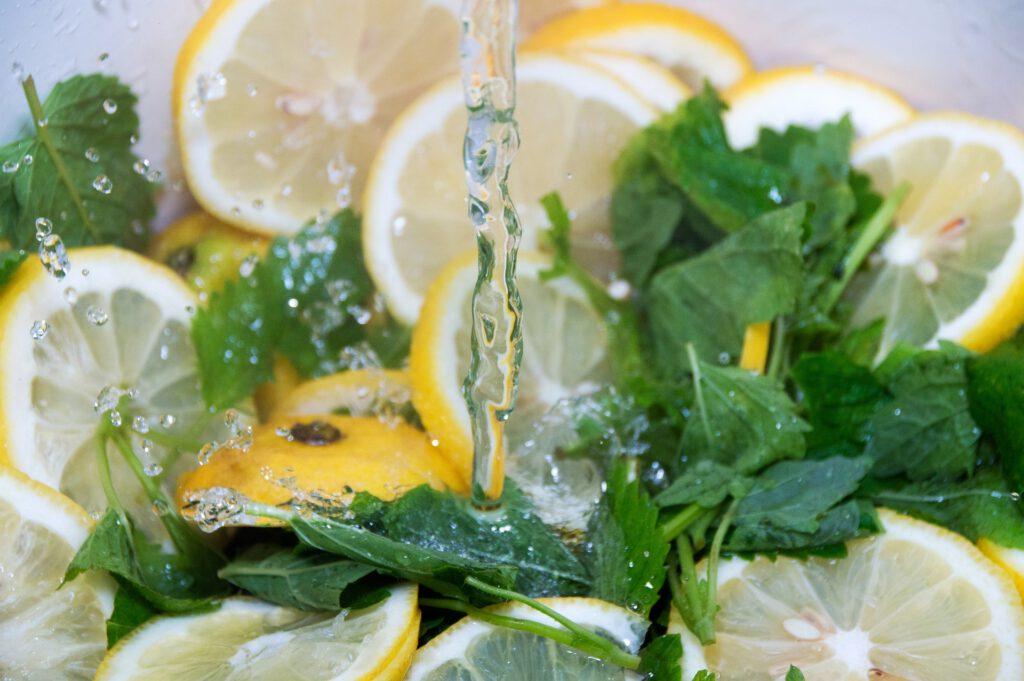Zitronenmelisse frische Kräuter Küchenkraut Obstsalat